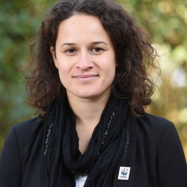 Lisa Plattner